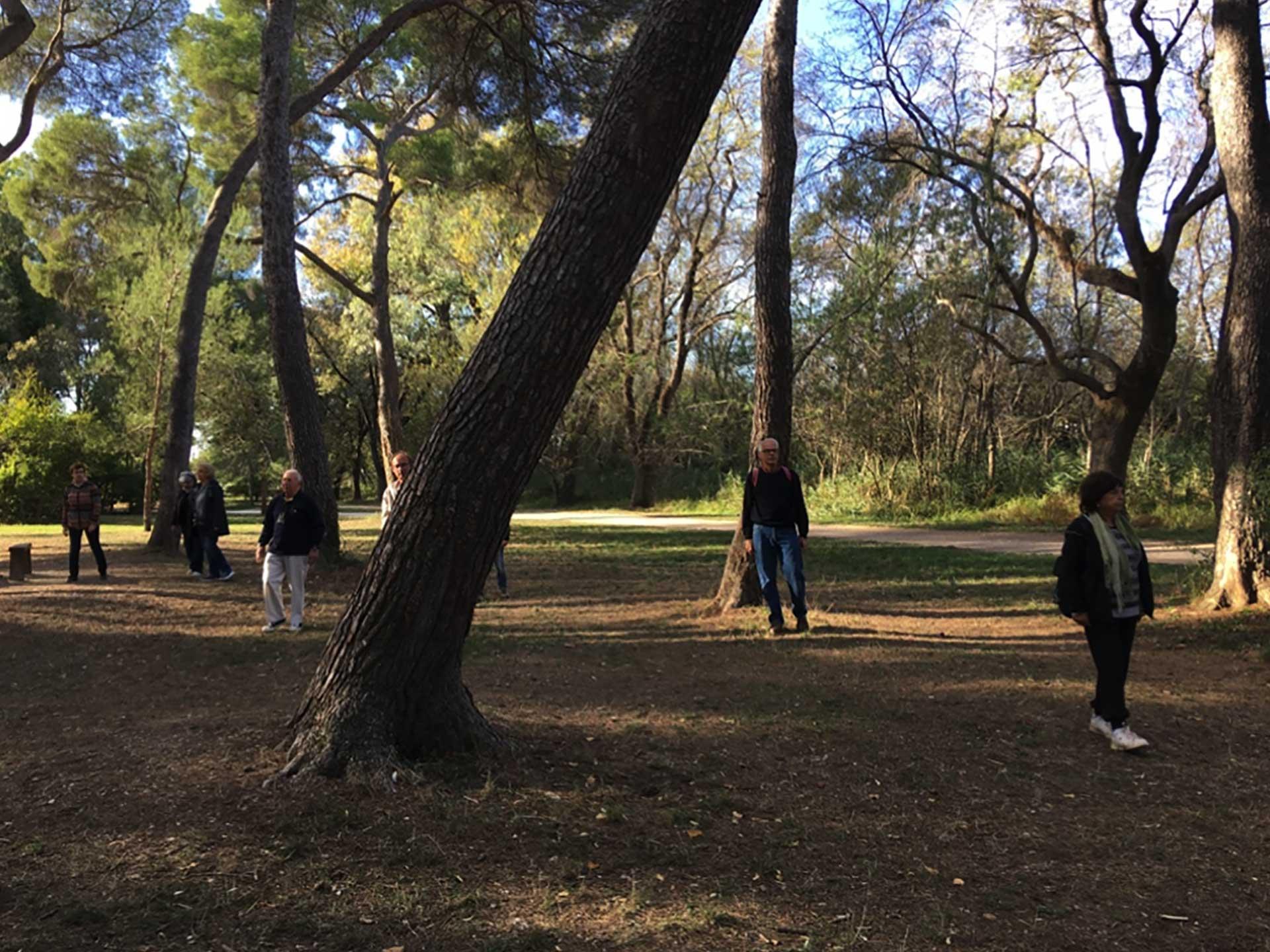 Atelier-Sophrologie-Meditation
